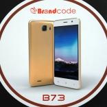brandcode b73 (1)